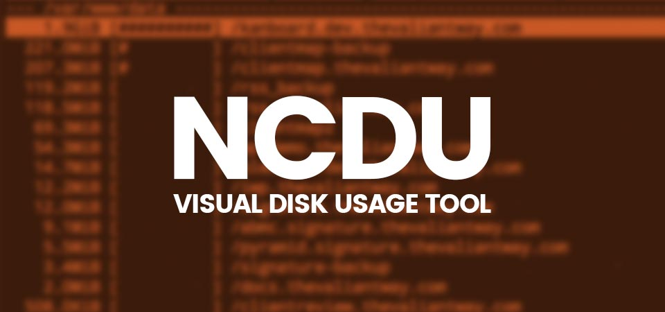 Checking disk space usage with Ncdu